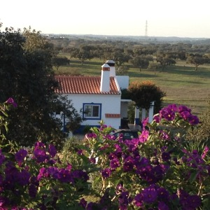 Cottage in October